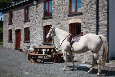 Ideal Equestrian Property