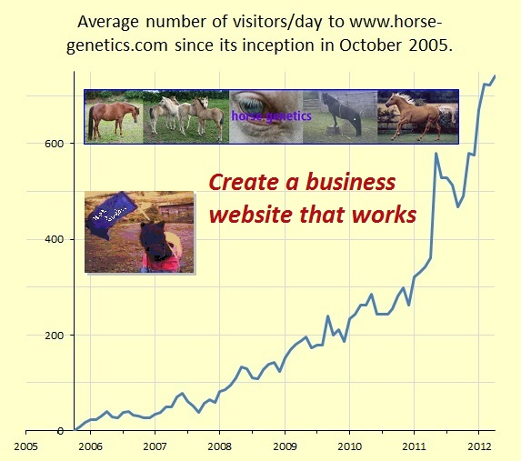 create a business website that works