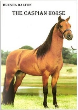 Horse Books For Sale