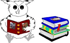 Night Owl Education and Equestrian